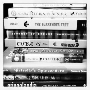 bw photo of books
