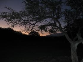 http://www.flickr.com/photos/rosasay/4696386255/lightbox/