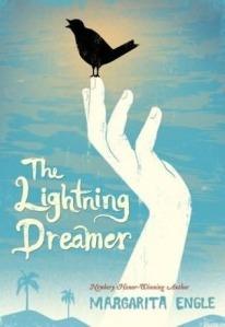 lightning-dreamer