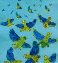parrots-2